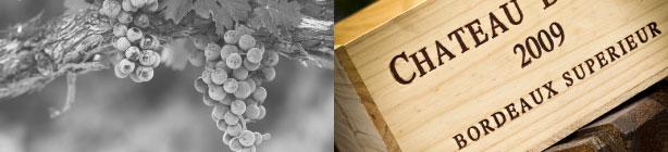 FRANCE WINE CONSULTING - Audit, Conseil & Gestion de propriété viticole