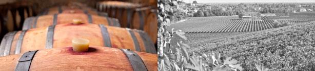 FRANCE WINE PROPERTIES - Acquérir un vignoble