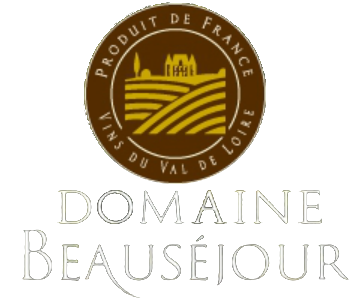 Logo Domain beausejour_last